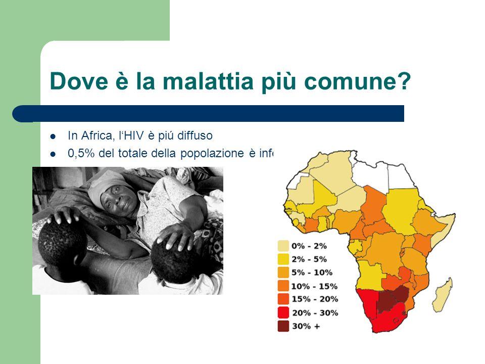 Dove è la malattia più comune? In Africa, lHIV è piú diffuso 0,5% del totale della popolazione è infettato da AIDS