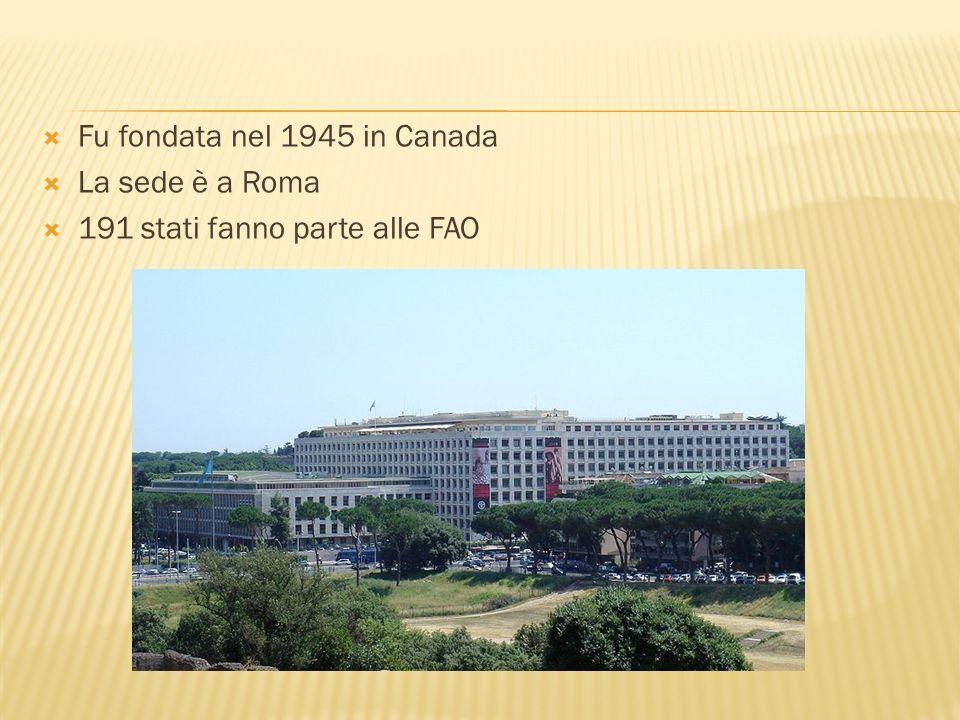 Fu fondata nel 1945 in Canada La sede è a Roma 191 stati fanno parte alle FAO