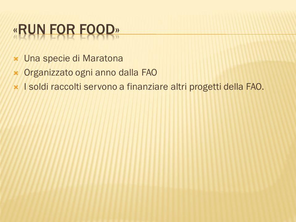 Una specie di Maratona Organizzato ogni anno dalla FAO I soldi raccolti servono a finanziare altri progetti della FAO.