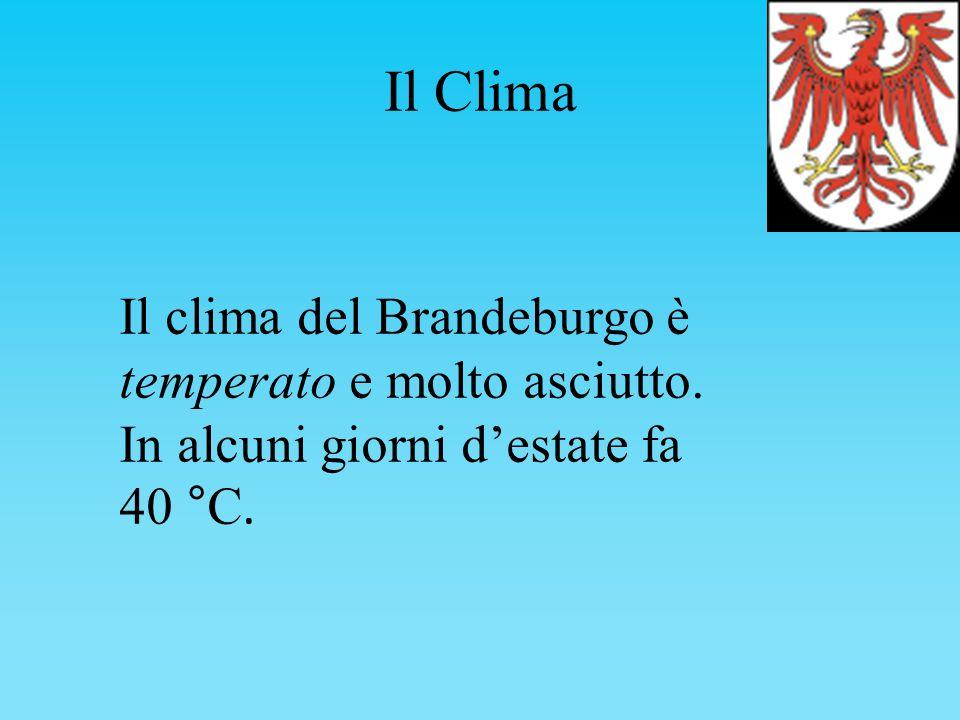 Il Clima Il clima del Brandeburgo è temperato e molto asciutto. In alcuni giorni destate fa 40 °C.