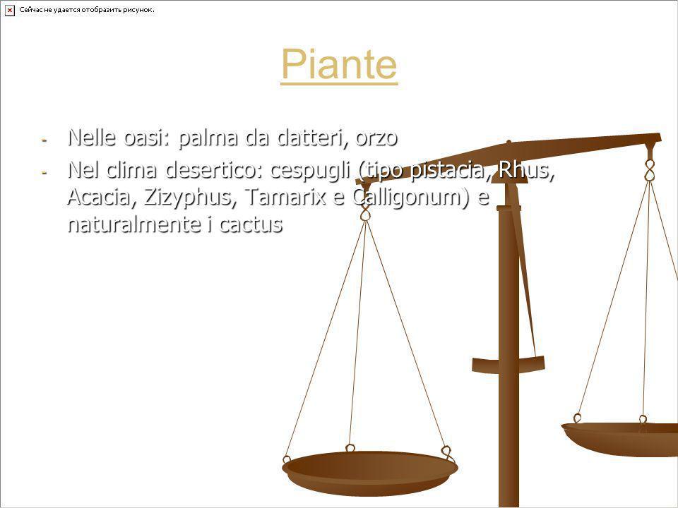 Piante - Nelle oasi: palma da datteri, orzo - Nel clima desertico: cespugli (tipo pistacia, Rhus, Acacia, Zizyphus, Tamarix e Calligonum) e naturalmen