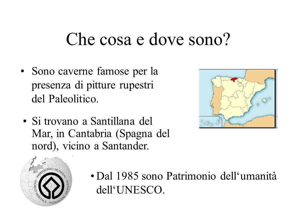 Che cosa e dove sono? Sono caverne famose per la presenza di pitture rupestri del Paleolitico. Dal 1985 sono Patrimonio dellumanità dellUNESCO. Si tro