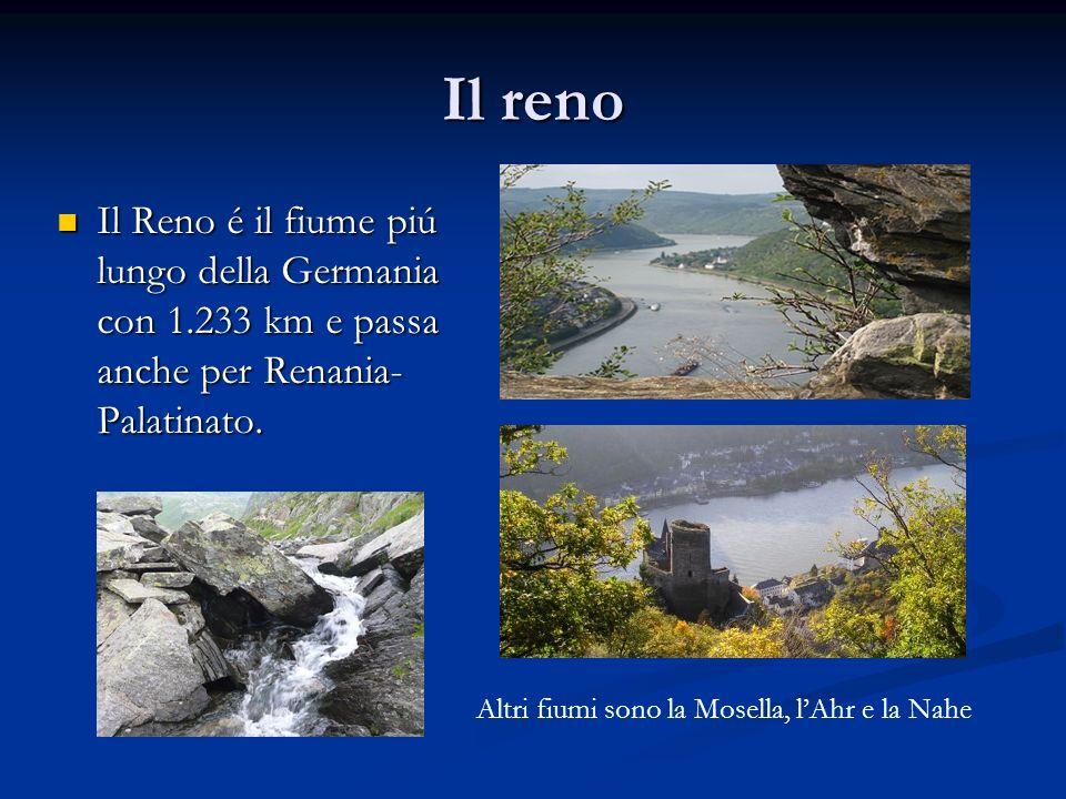 Il reno Il Reno é il fiume piú lungo della Germania con 1.233 km e passa anche per Renania- Palatinato. Il Reno é il fiume piú lungo della Germania co