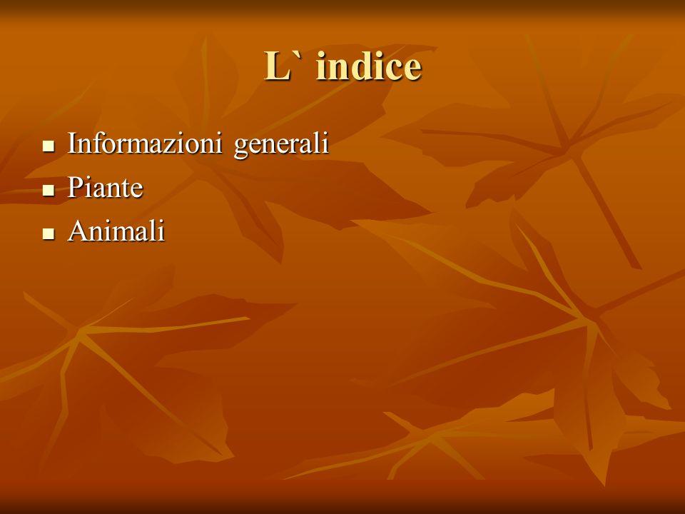 L` indice Informazioni generali Informazioni generali Piante Piante Animali Animali