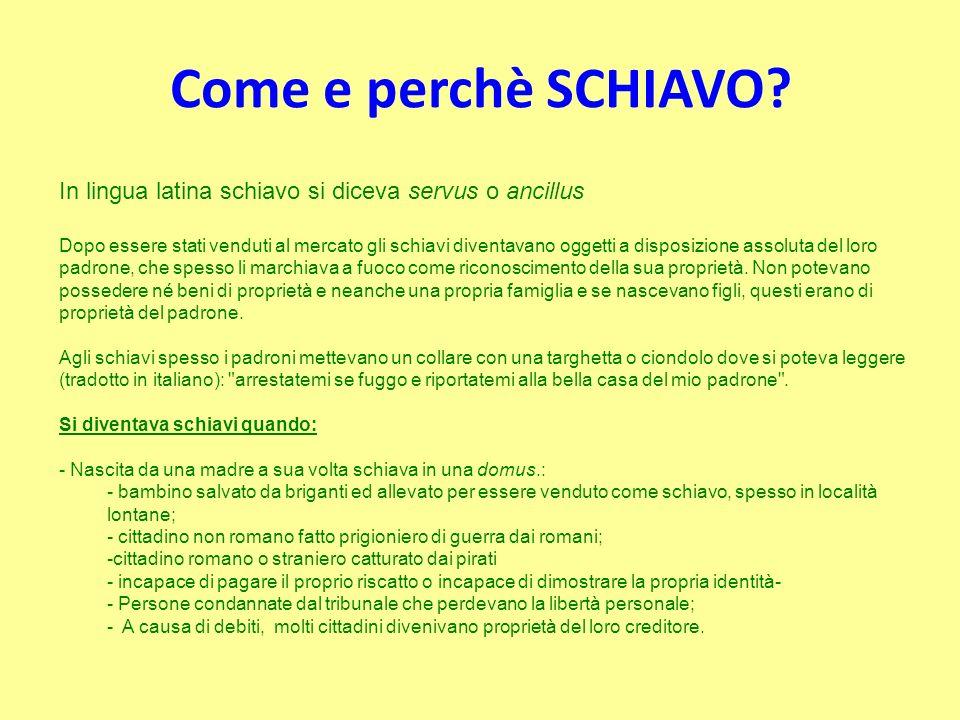 Come e perchè SCHIAVO? In lingua latina schiavo si diceva servus o ancillus Dopo essere stati venduti al mercato gli schiavi diventavano oggetti a dis