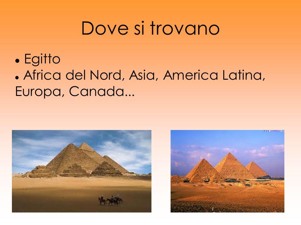 Dove si trovano Egitto Africa del Nord, Asia, America Latina, Europa, Canada...