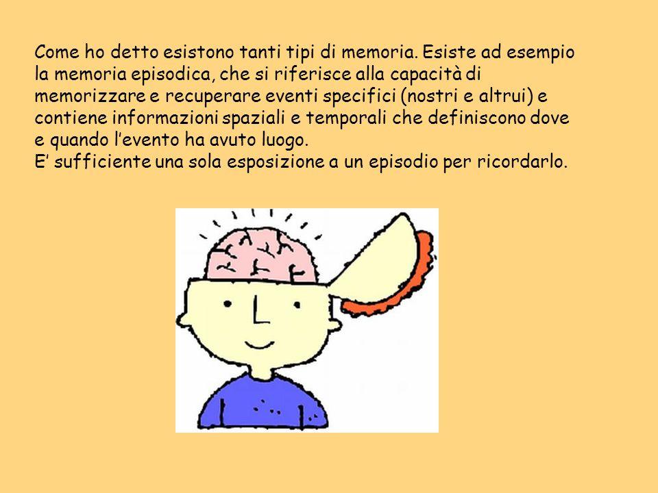 Come ho detto esistono tanti tipi di memoria. Esiste ad esempio la memoria episodica, che si riferisce alla capacità di memorizzare e recuperare event