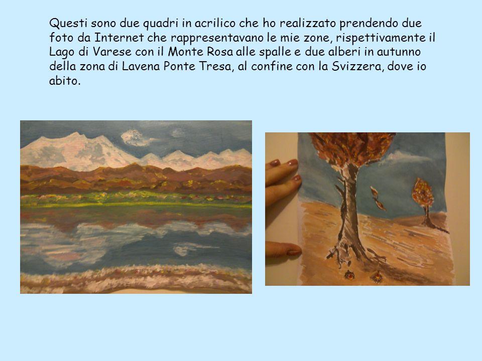 Questi sono due quadri in acrilico che ho realizzato prendendo due foto da Internet che rappresentavano le mie zone, rispettivamente il Lago di Varese