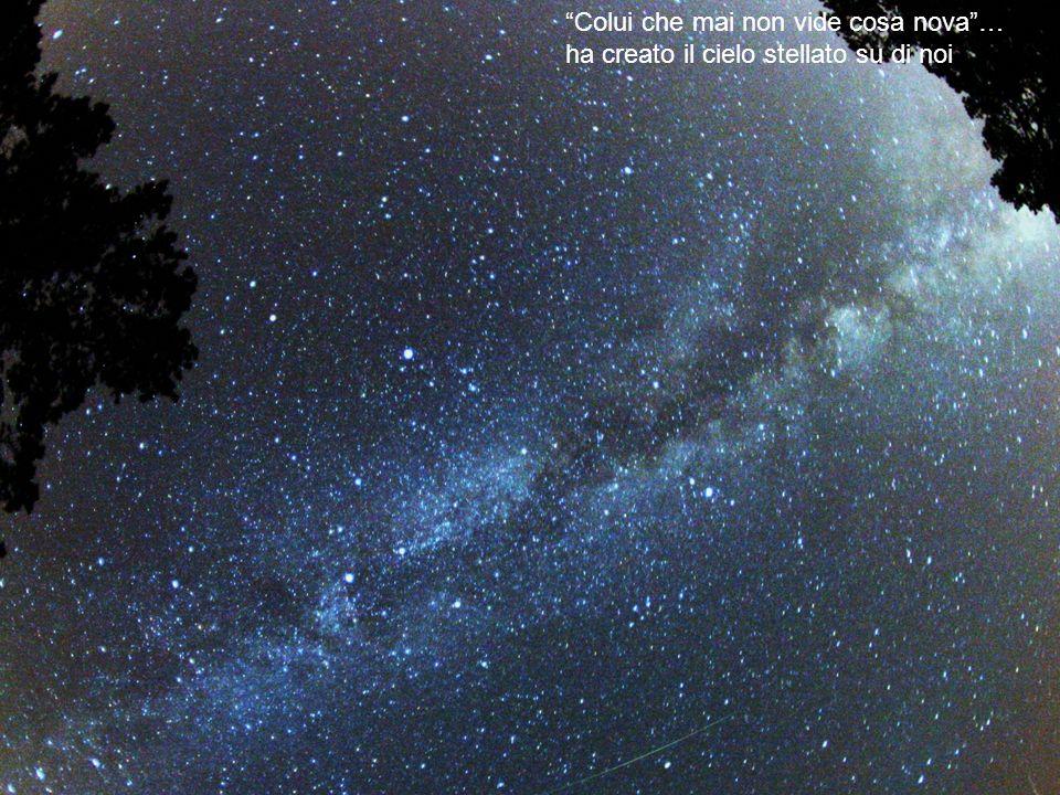 Colui che mai non vide cosa nova… ha creato il cielo stellato su di noi