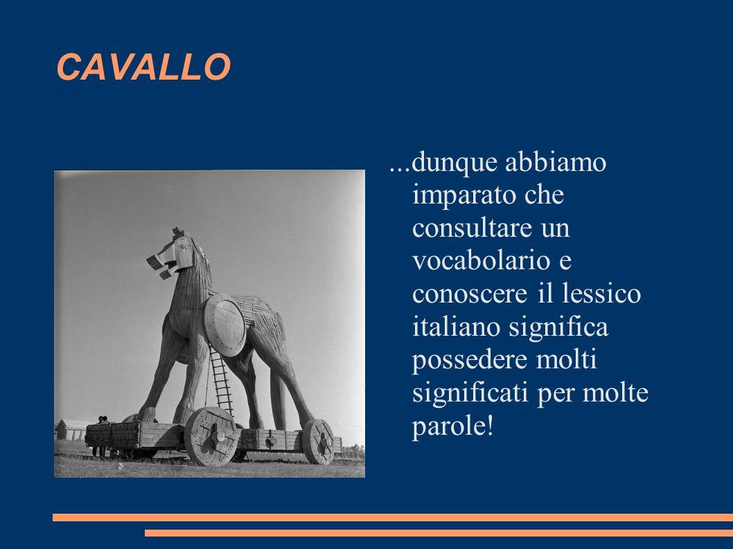 ...dunque abbiamo imparato che consultare un vocabolario e conoscere il lessico italiano significa possedere molti significati per molte parole!