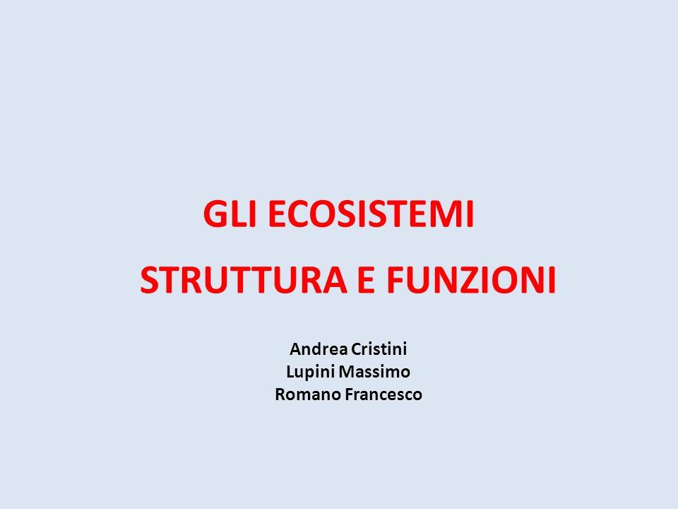 GLI ECOSISTEMI STRUTTURA E FUNZIONI Andrea Cristini Lupini Massimo Romano Francesco