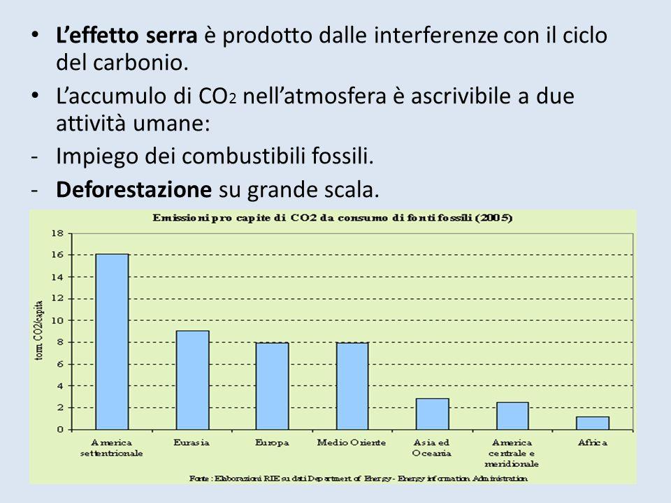 Leffetto serra è prodotto dalle interferenze con il ciclo del carbonio. Laccumulo di CO 2 nellatmosfera è ascrivibile a due attività umane: -Impiego d