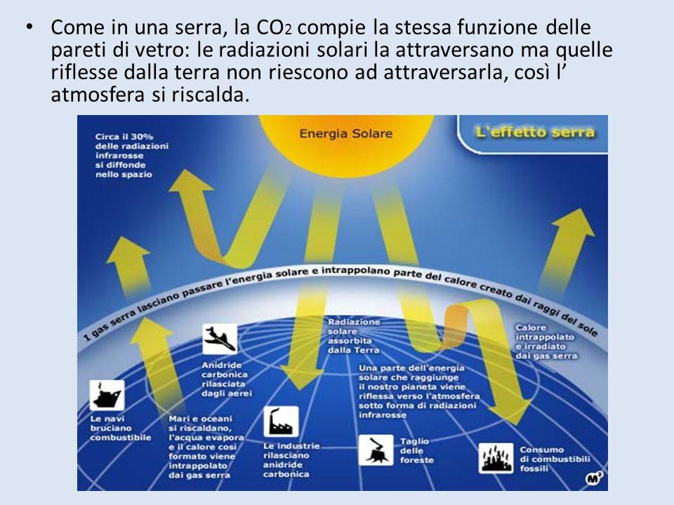 Come in una serra, la CO 2 compie la stessa funzione delle pareti di vetro: le radiazioni solari la attraversano ma quelle riflesse dalla terra non riescono ad attraversarla, così l atmosfera si riscalda.