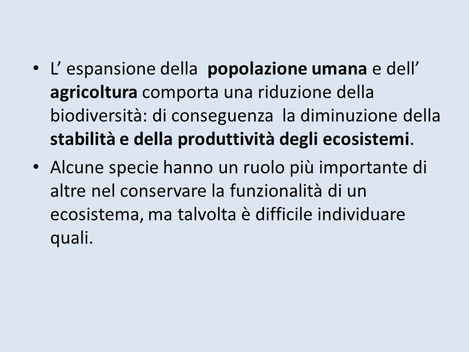 L espansione della popolazione umana e dell agricoltura comporta una riduzione della biodiversità: di conseguenza la diminuzione della stabilità e del