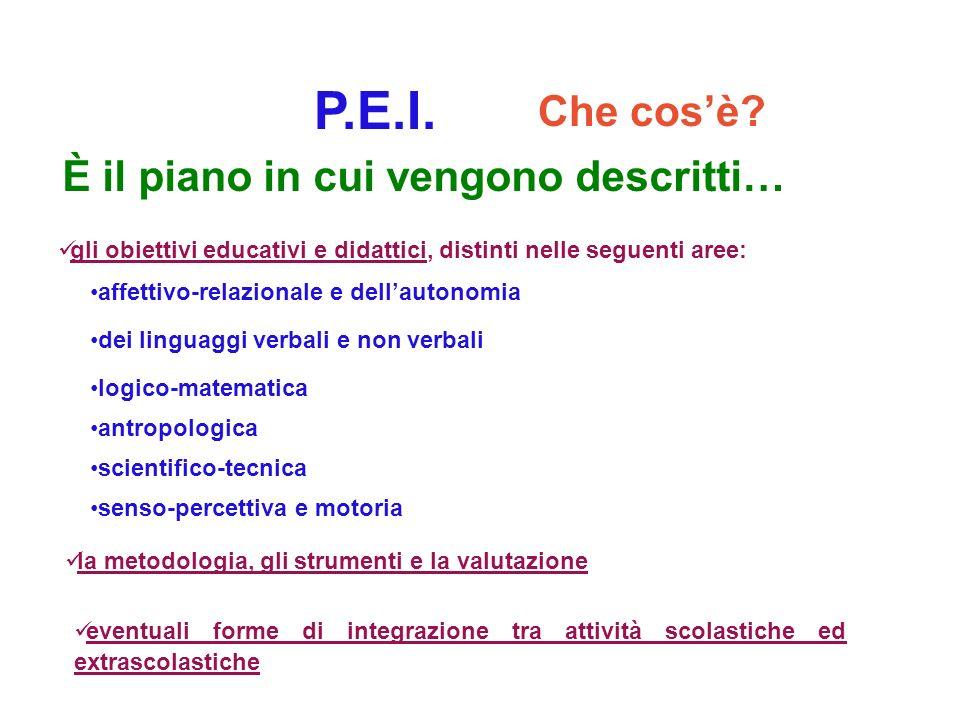 P.E.I. Che cosè? gli obiettivi educativi e didattici, distinti nelle seguenti aree: la metodologia, gli strumenti e la valutazione eventuali forme di