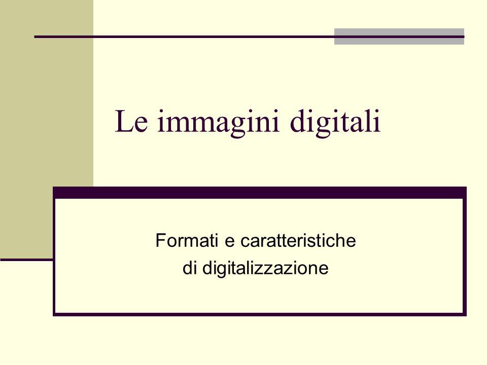 Le immagini digitali Formati e caratteristiche di digitalizzazione