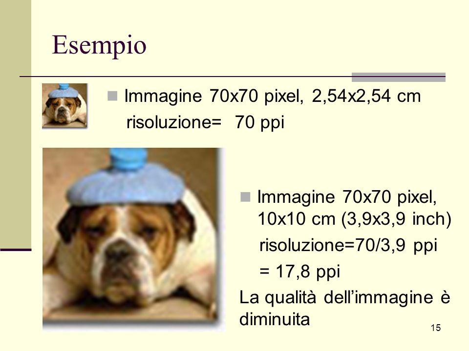 Esempio Immagine 70x70 pixel, 2,54x2,54 cm risoluzione= 70 ppi Immagine 70x70 pixel, 10x10 cm (3,9x3,9 inch) risoluzione=70/3,9 ppi = 17,8 ppi La qual