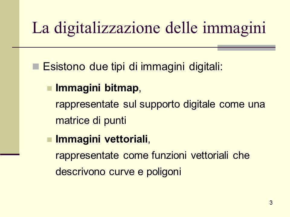 La digitalizzazione delle immagini Esistono due tipi di immagini digitali: Immagini bitmap, rappresentate sul supporto digitale come una matrice di pu