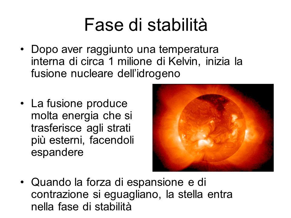 Fase di stabilità Dopo aver raggiunto una temperatura interna di circa 1 milione di Kelvin, inizia la fusione nucleare dellidrogeno La fusione produce
