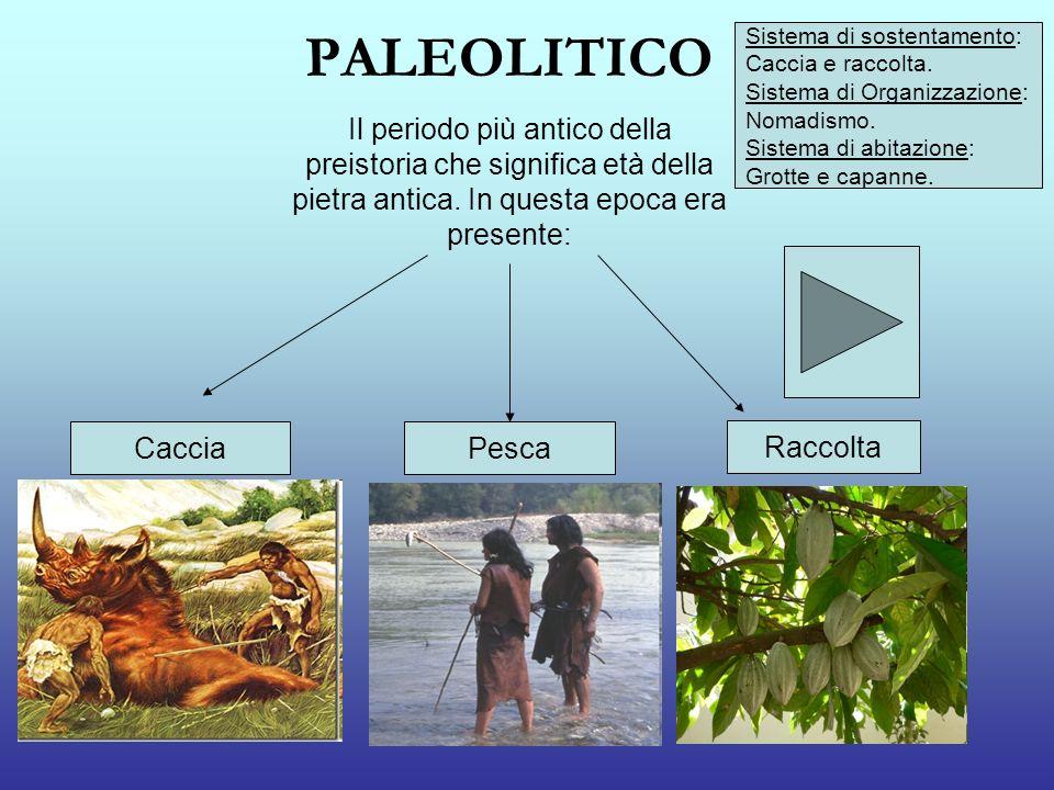 PALEOLITICO Il periodo più antico della preistoria che significa età della pietra antica. In questa epoca era presente: CacciaPesca Raccolta Sistema d