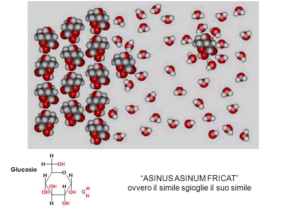 Vitamina idrosolubile Vitamina liposolubile