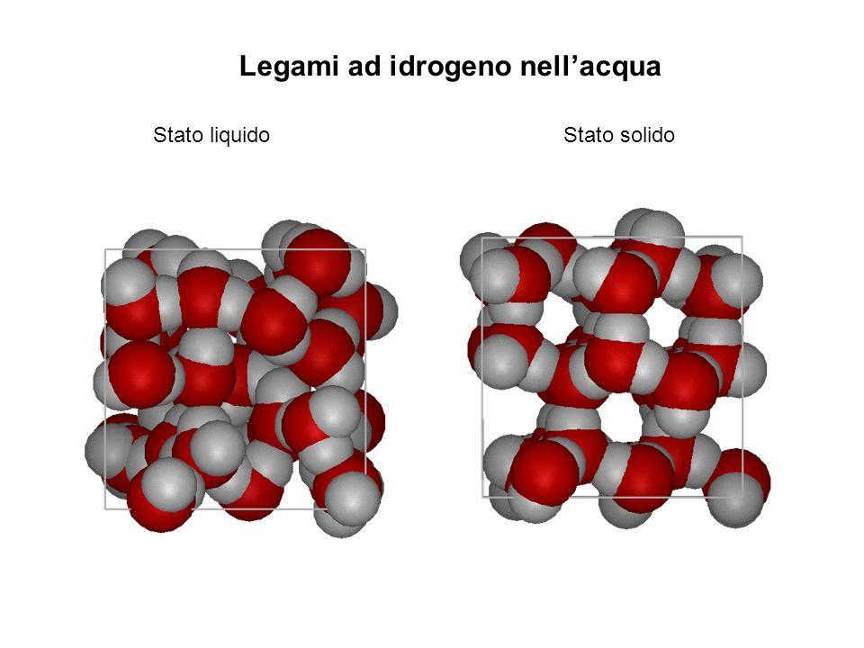 Legami ad idrogeno nellacqua Stato liquido Stato solido