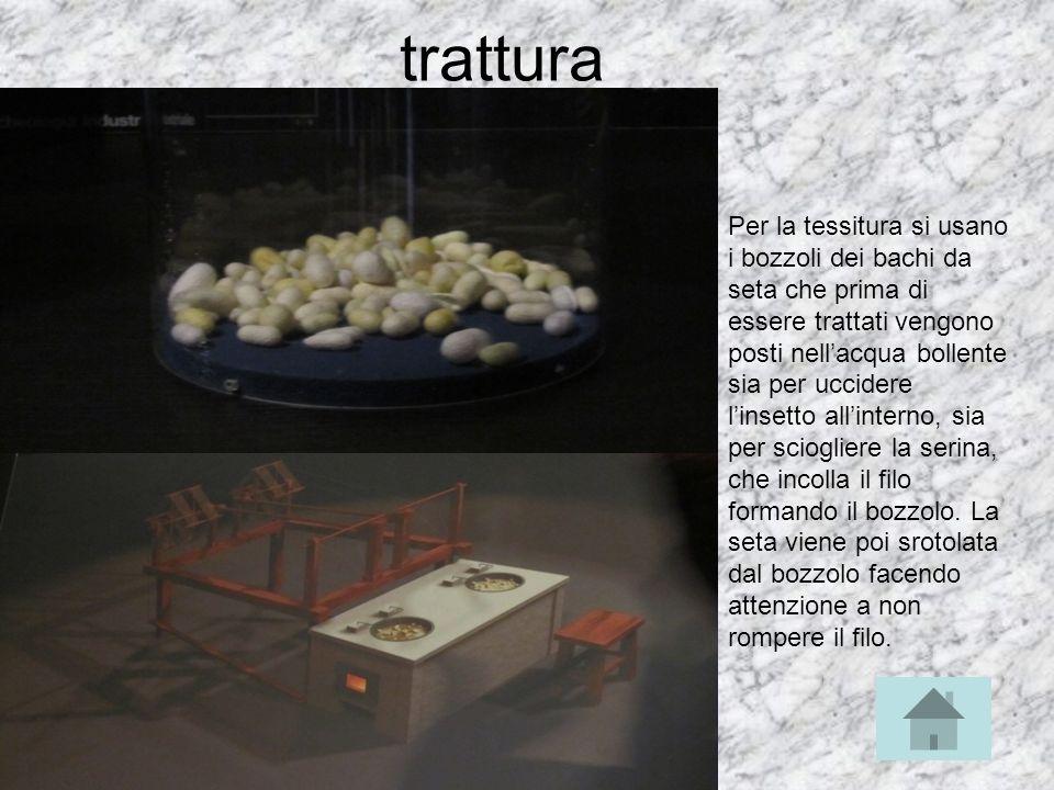trattura Per la tessitura si usano i bozzoli dei bachi da seta che prima di essere trattati vengono posti nellacqua bollente sia per uccidere linsetto