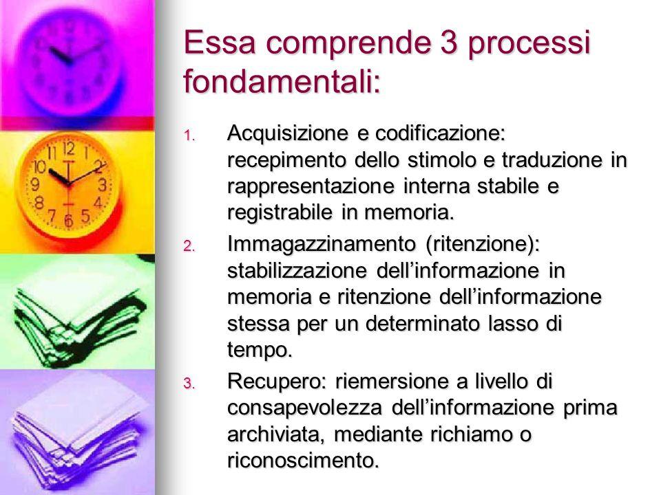 Essa comprende 3 processi fondamentali: 1. Acquisizione e codificazione: recepimento dello stimolo e traduzione in rappresentazione interna stabile e