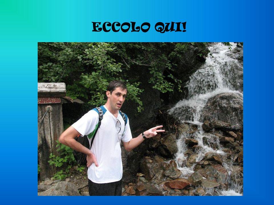 ECCOLO QUI!