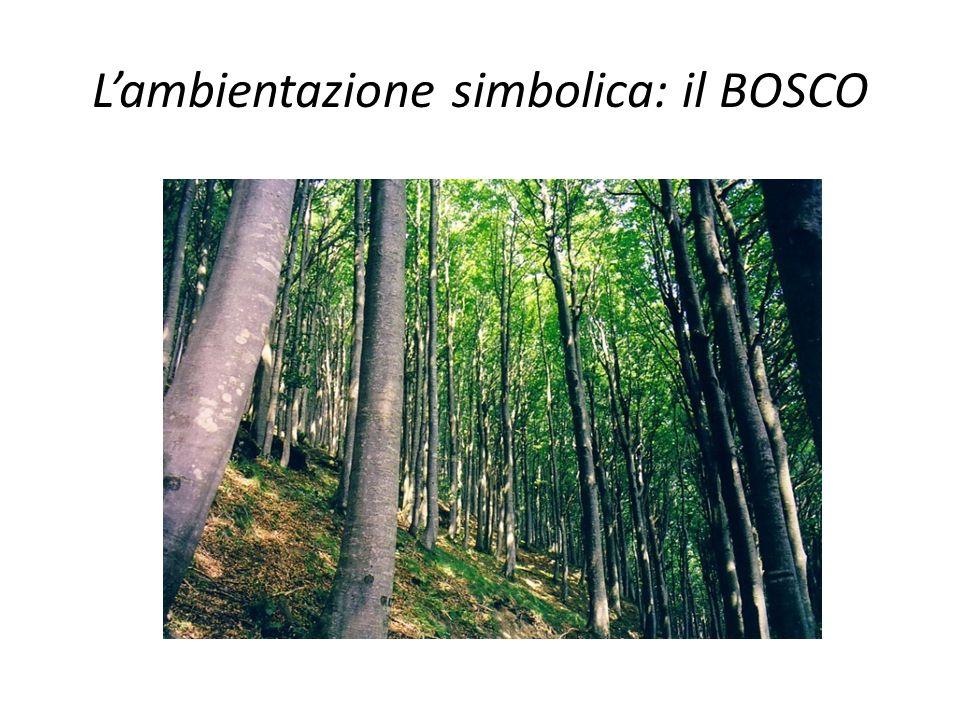 Lambientazione simbolica: il BOSCO