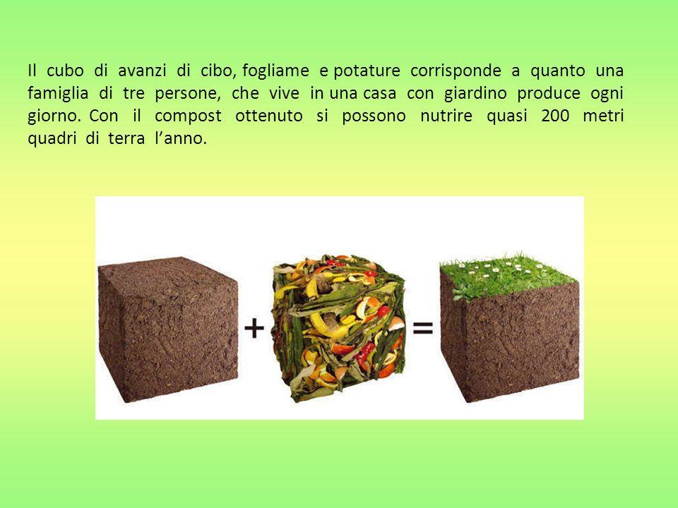 Il cubo di avanzi di cibo, fogliame e potature corrisponde a quanto una famiglia di tre persone, che vive in una casa con giardino produce ogni giorno.