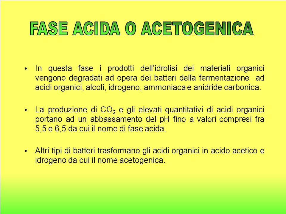 In questa fase i prodotti dellidrolisi dei materiali organici vengono degradati ad opera dei batteri della fermentazione ad acidi organici, alcoli, idrogeno, ammoniaca e anidride carbonica.