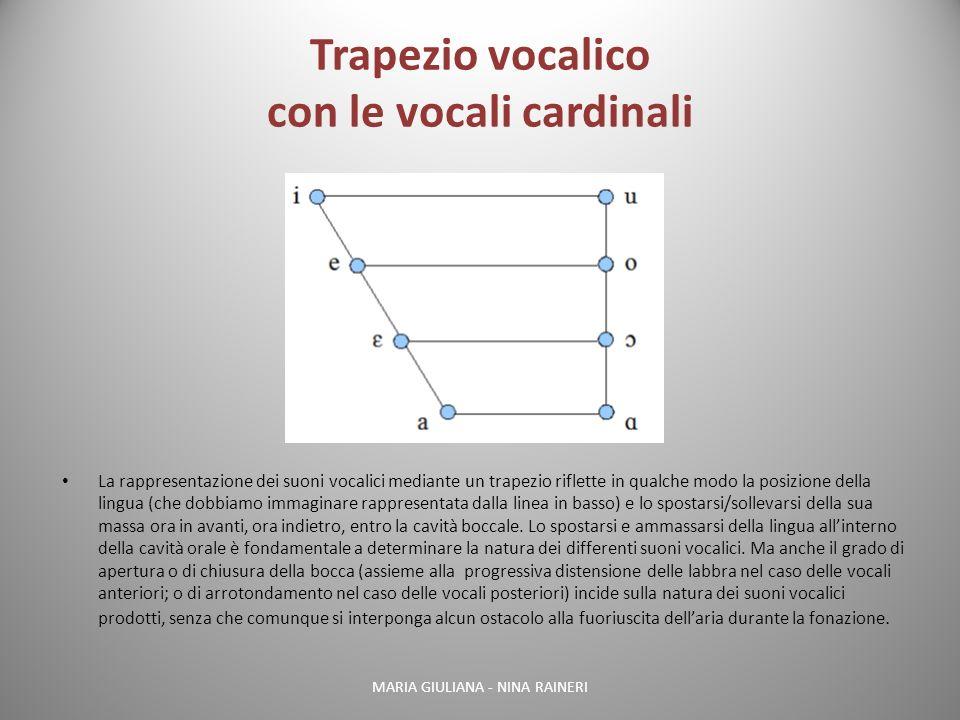 Trapezio vocalico con le vocali cardinali La rappresentazione dei suoni vocalici mediante un trapezio riflette in qualche modo la posizione della ling