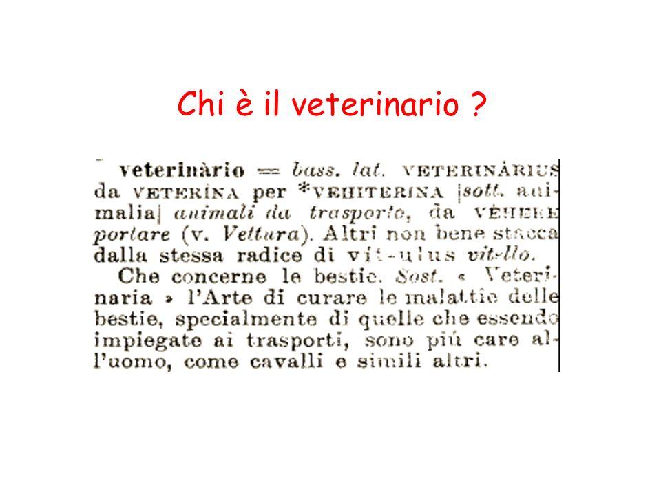 Chi è il veterinario ?
