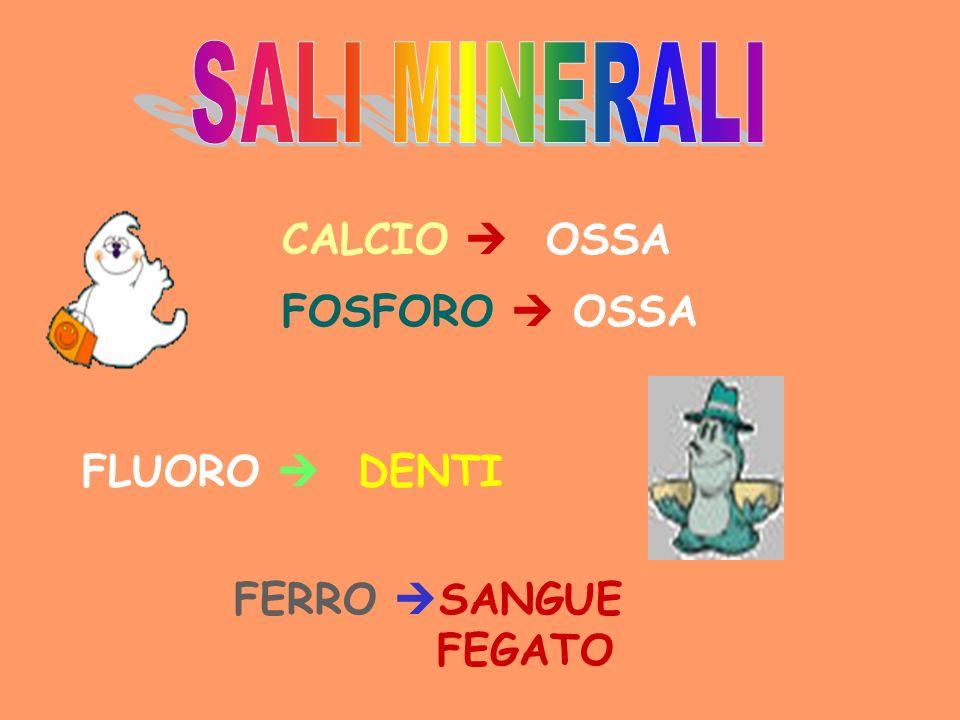 CALCIO OSSA FLUORO DENTI FERRO SANGUE FEGATO FOSFORO OSSA