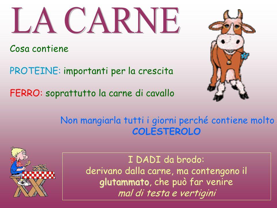 Cosa contiene PROTEINE: importanti per la crescita FERRO: soprattutto la carne di cavallo I DADI da brodo: glutammato derivano dalla carne, ma conteng