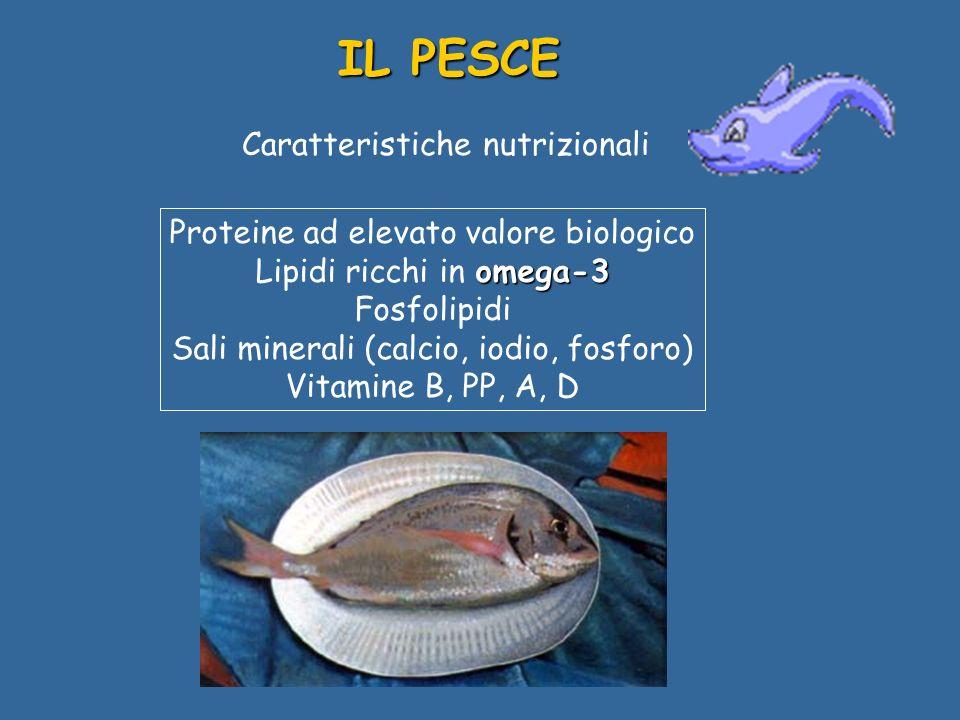 Caratteristiche nutrizionali Proteine ad elevato valore biologico omega-3 Lipidi ricchi in omega-3 Fosfolipidi Sali minerali (calcio, iodio, fosforo) Vitamine B, PP, A, D IL PESCE