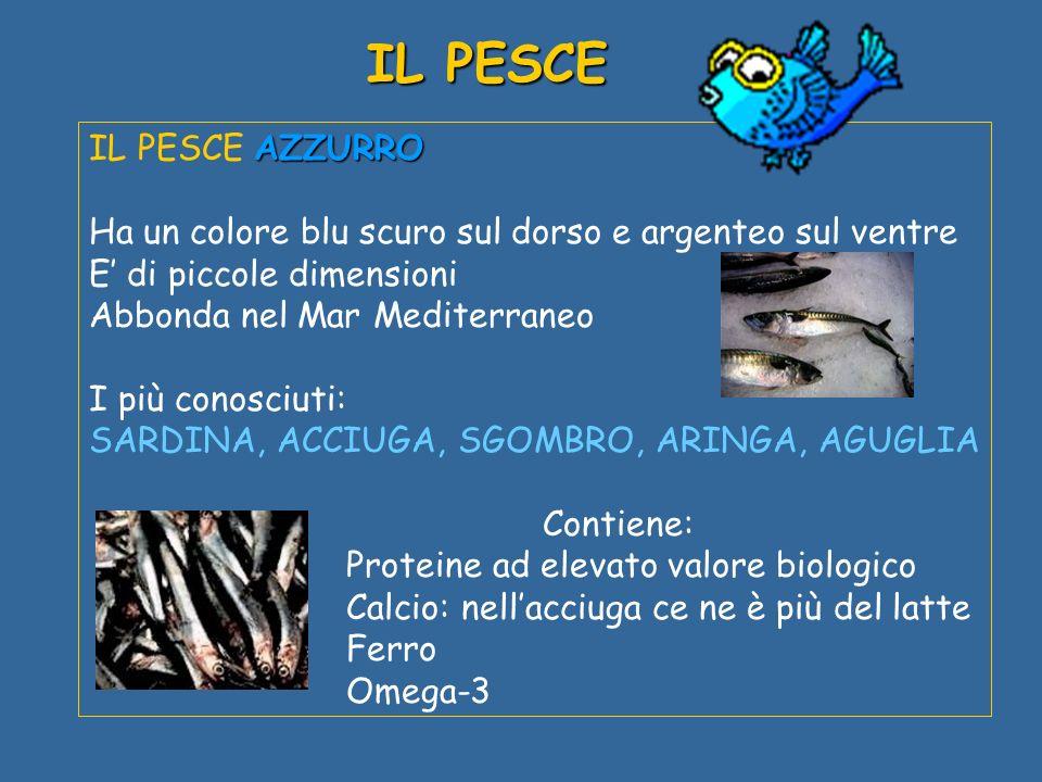 AZZURRO IL PESCE AZZURRO Ha un colore blu scuro sul dorso e argenteo sul ventre E di piccole dimensioni Abbonda nel Mar Mediterraneo I più conosciuti: