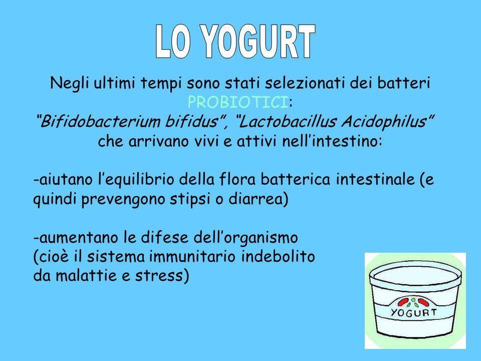 Negli ultimi tempi sono stati selezionati dei batteri PROBIOTICI: Bifidobacterium bifidus, Lactobacillus Acidophilus che arrivano vivi e attivi nellin