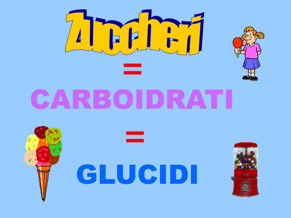 CARBOIDRATI GLUCIDI = =