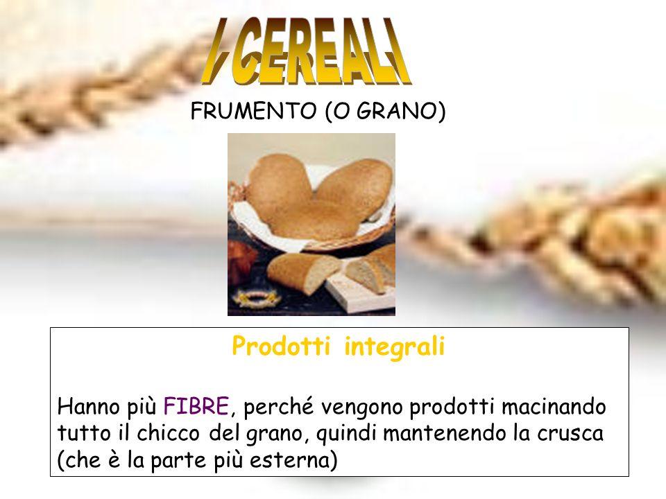 FRUMENTO (O GRANO) Prodotti integrali Hanno più FIBRE, perché vengono prodotti macinando tutto il chicco del grano, quindi mantenendo la crusca (che è la parte più esterna)