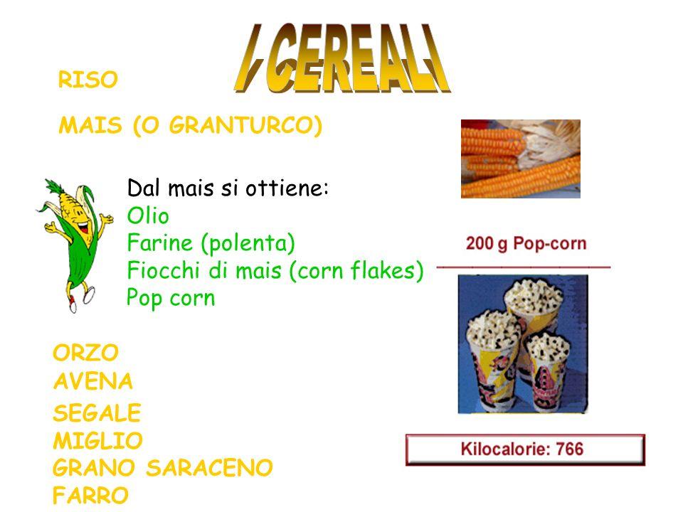 RISO MAIS (O GRANTURCO) Dal mais si ottiene: Olio Farine (polenta) Fiocchi di mais (corn flakes) Pop corn ORZO AVENA SEGALE MIGLIO GRANO SARACENO FARRO