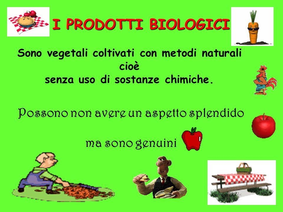 I PRODOTTI BIOLOGICI Sono vegetali coltivati con metodi naturali cioè senza uso di sostanze chimiche. Possono non avere un aspetto splendido ma sono g