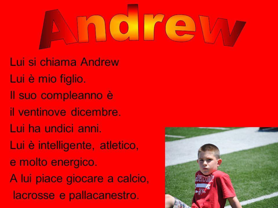 Lui si chiama Andrew Lui è mio figlio. Il suo compleanno è il ventinove dicembre. Lui ha undici anni. Lui è intelligente, atletico, e molto energico.