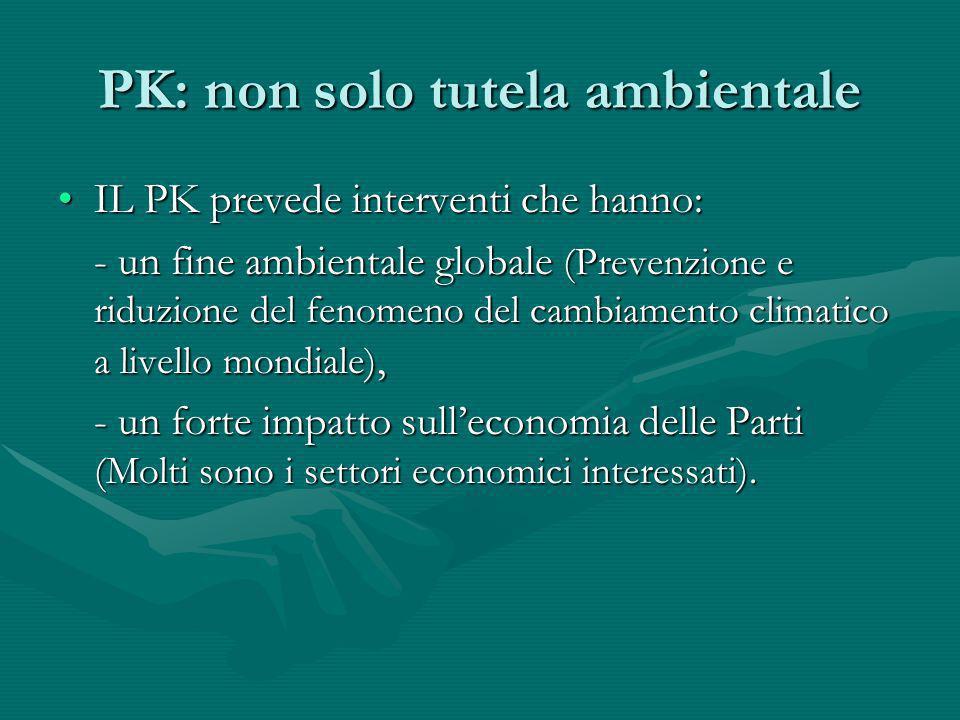 PK: non solo tutela ambientale IL PK prevede interventi che hanno:IL PK prevede interventi che hanno: - un fine ambientale globale (Prevenzione e ridu