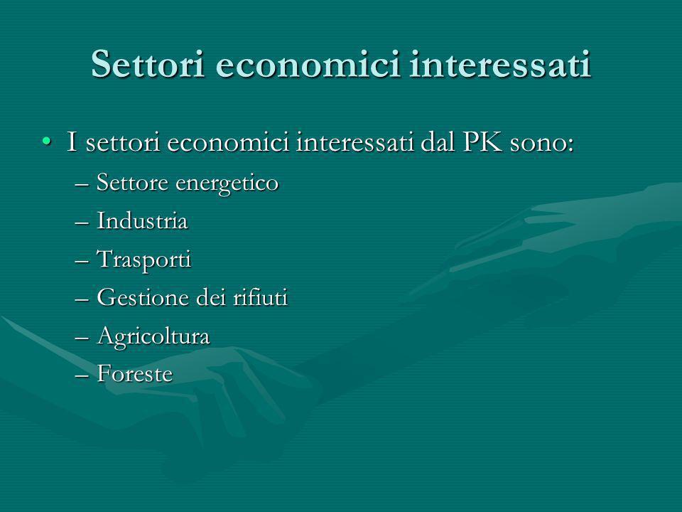 Settori economici interessati I settori economici interessati dal PK sono:I settori economici interessati dal PK sono: –Settore energetico –Industria