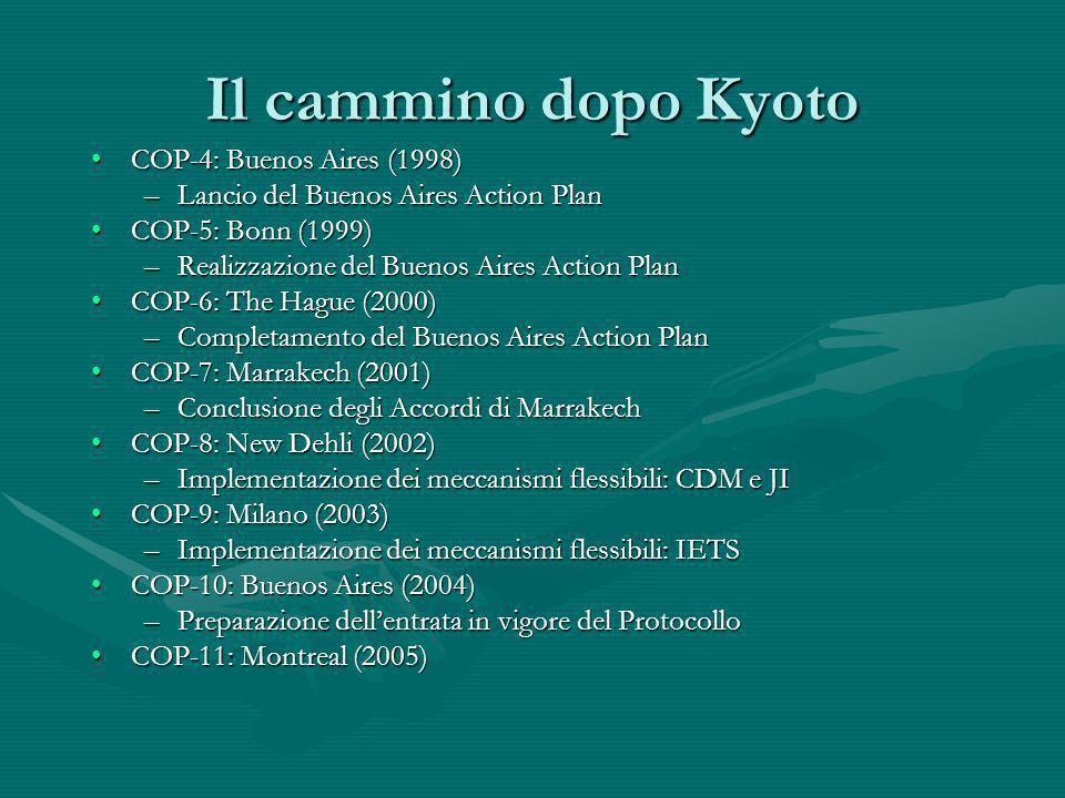 Il cammino dopo Kyoto COP-4: Buenos Aires (1998)COP-4: Buenos Aires (1998) –Lancio del Buenos Aires Action Plan COP-5: Bonn (1999)COP-5: Bonn (1999) –