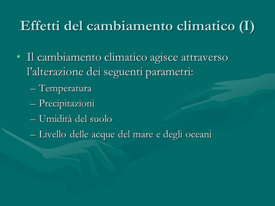 Effetti del cambiamento climatico (II) Lalterazione di tali parametri può provocare impatti negativi su:Lalterazione di tali parametri può provocare impatti negativi su: –agricoltura e foreste –economia delle zone costiere –salute –turismo –mobilità (emigrati e rifugiati ambientali)