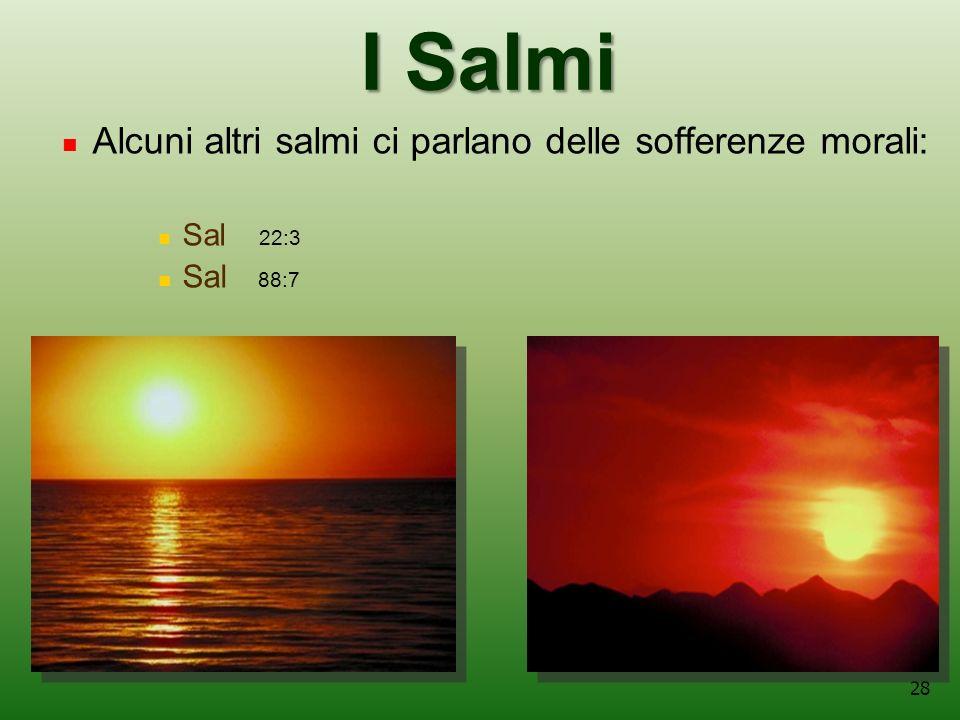 28 I Salmi Alcuni altri salmi ci parlano delle sofferenze morali: Sal 22:3 Sal 88:7