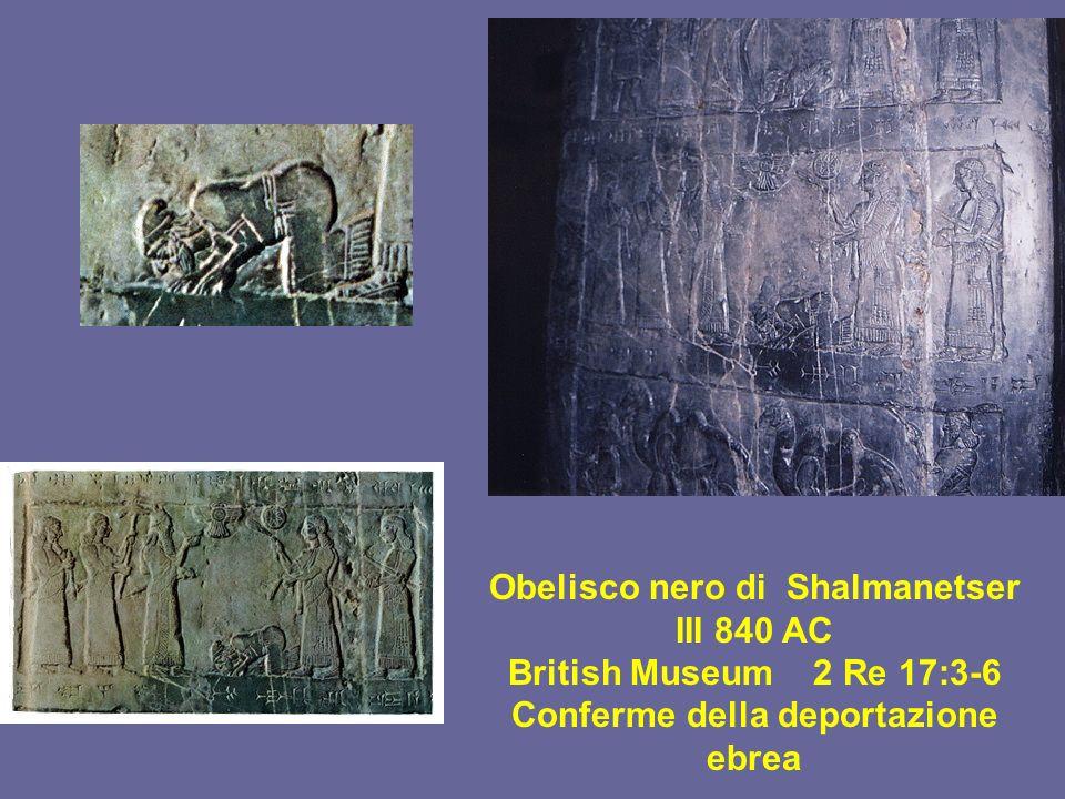 Obelisco nero di Shalmanetser III 840 AC British Museum 2 Re 17:3-6 Conferme della deportazione ebrea